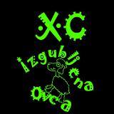 7. XCO Izgubljena Ovca